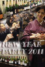 New Year Party 2011